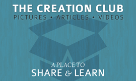 The Creation Club, a place to share and learn.