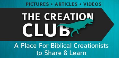 The Creation Club