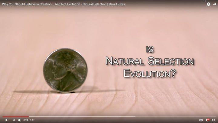 Why You Should Believe In Creation …And Not Evolution – Natural Selection | David Rives