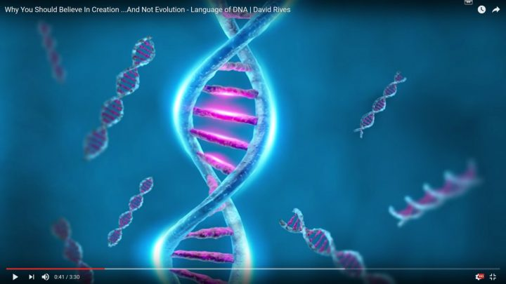 Why You Should Believe In Creation …And Not Evolution – Language of DNA | David Rives
