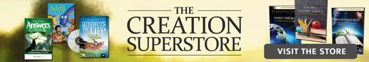 Creation Superstore