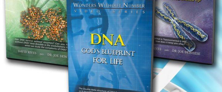 DNA Code Trilogy 01