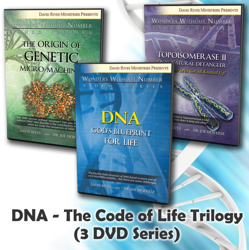 DNA Code Trilogy 01