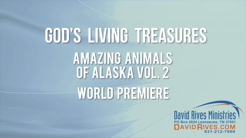 """Amazing"" Success! - Animals of Alaska Part 2 WORLD PREMIERE"
